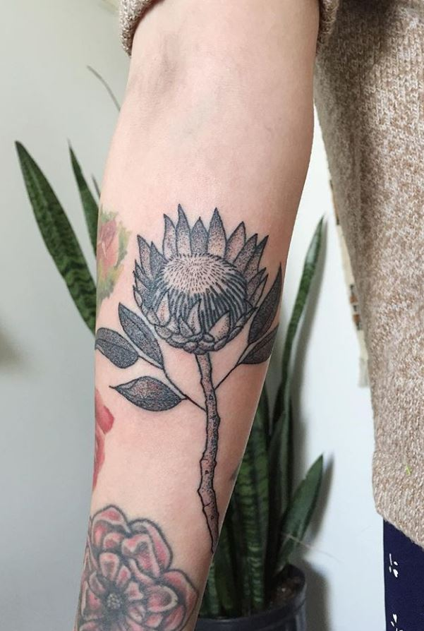 60+ Tattoos by Tea Leigh from New York